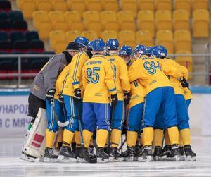 Bild: Rikard Bäckman / Bandypuls.se / TT