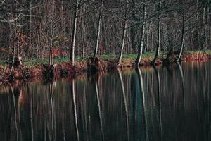 Sluttampen för höstens fina färger och Gröna Gången visade sig från sin bästa sida genom den här spegelblanka vattenytan. Foto: Camilla Norman