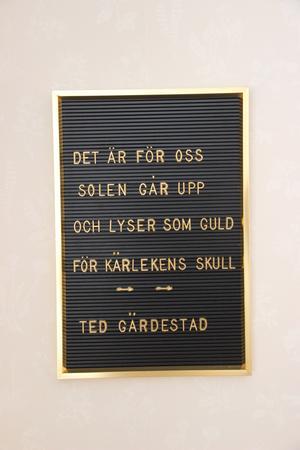 Ted Gärdestads musik har hjälpt Linnéa genom mörka perioder. Nu ska hon spela in två covers av hans låtar.
