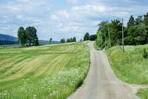 Högre grundavdrag för dem som bor på landsbygden kanske kan vara något, funderar skribenten.