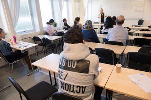 Eleverna på bilden har inget med Humanus i Härnösand att göra. Genrebild. Foto: Fredrik Sandberg / TT .