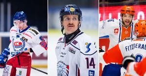 Evan McGrath, Mark Matheson och Robert Dowd har alla tre varit i Sverige och spelat. Bild: Bildbyrån