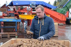 Patryk Kowalczyk jobbar normalt som snickare på Snöborg gård, men när det skördas potatis är han med på det istället.