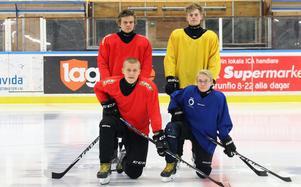Tvillingarna van Mierlo är inte ensamma om att resa långt för att få spela ishockey i Brunflo U15. De här fyra spelarna pendlar mellan 10 och 20 mil tur och retur varje träning. Markus Modén, Joel Martinsson, Robin Svedberg och Adam Wikberg.
