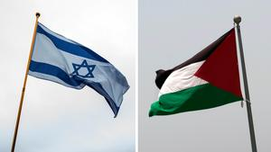 Den israeliska och palestinska flaggan. Foto: Jens Meyer/AP Photo och Nasser Nasser/AP Photo