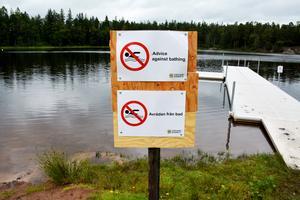 Vems fel är det om badvattnet förorenas? Stadsbornas? Hästarnas? Nej landsbygdens, funderar insändarskribenten.