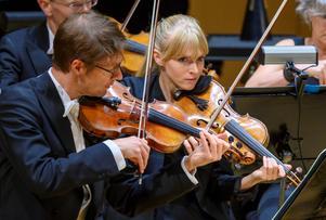 Två förstaviolinister, konsertmästaren Daniel Frankel och Ylva Larsdotter.Foto: Lennart Hyse