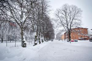 Boende på Öster har protesterat mot förslaget att ta bort trafikhindret mellan Nygatan och Redargatan.