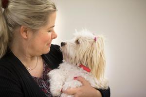 Malva är en bichon havanais och är en av Agnetas egna hundar som får följa med till jobbet.