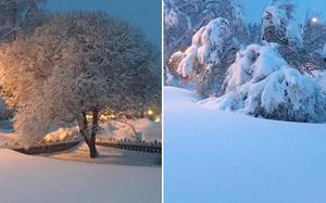 Bergvik. Till vänster onsdag kväll. Till höger torsdag kväll. Foto: Eva Sundin