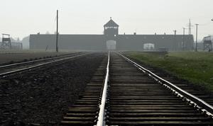 Förintelsen får aldrig någonsin glömmas eller förminskas. Snart finns inga överlevande kvar och då förvandlas berättelserna och vittnesmålen till enbart historia, skriver Karin Karlsbro. Foto: Alik Keplicz, TT.