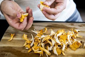 Kantareller har en god och rustik smak som passar bra till Lennie Hanssons husmansinspirerade matlagning.