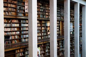 Biblioteken har tuffa tider. Bild: TT