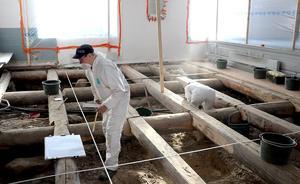Under förundersökningen har bland annat flera gravar konstaterats från den medeltida kyrka som stod på platsen före dagens 1800-talskyrka.