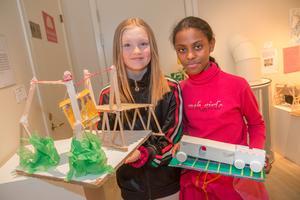 Lyra Erikscon och Shulamit Grmj hade jobbat mycket med uppgiften och konstruerat ett tåg och en djurlift.