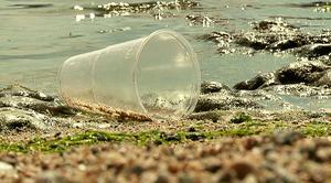 Plastskräp som skitar ner i världshaven är ett miljöproblem. Foto: Erland Vinberg TT