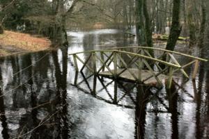 En av gångbroarna i Apladalen i Värnamo ligger under vatten.