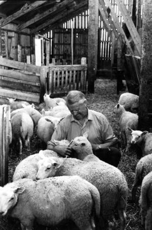I juli 1973 publicerade ÖP en lång artikel om paret Kurt och Solveig Österberg, som några år tidigare flyttat till Östbacken för att ägna sig åt fårskötsel.