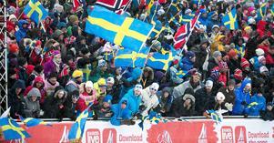 Skid-VM:s publik kom inte att bo i den tomma folkhögskolan i Ludvika.