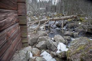 Vattenföringen i fåran till kvarhjulen vid Nyqvist smedja måste begränsas när dammen rivs.