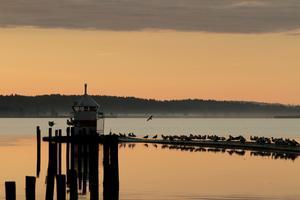 Första oktobermorgonen i år stannade jag till i hamnen och tog kort när solen just tagit sig upp över horisonten. Magiskt vackert.