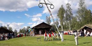 Resningen av midsommarstången vid Gammelgården i Malung lockade mycket folk.