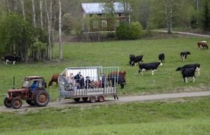 Många tog chansen att åka en  tur med en av gårdens traktorer och kärra.