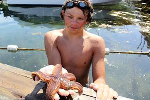 Larry och Sebastian älskar Västkusten och allt som finns att titta på i vattnet där. Den här sjöstjärnan var en av de större de hittade förra sommaren. Foto: privat
