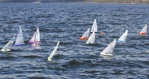 Fjärrstyrda segelbåtar växer snabbt i popularitet i världen. Nästa år arrangeras VM i Nynäshamn. Foto: Privat