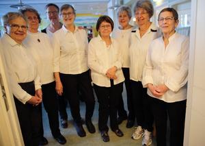 Orsa Besöksgrupp, från vänster, Ulla Enmalm, Gun Nord, Eva Ljung, Inga-Britt Eriksson, Birgitta Ållebrand, Berit Sundstedt, Inger Käck, Gun Eriksson var servitriser under lunchen.