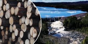 """""""Det är helt oacceptabelt att de ungefär 1,7 miljoner människor som lever i de sju skogslänen idag betalar ungefär 11,5 miljarder kronor mer i skatt än om skattesatsen hade varit densamma som i Stockholms län"""" skriver Föreningen Sveriges Vattenkraftskommuner och regioner (FSV).Foto: TT/montage"""