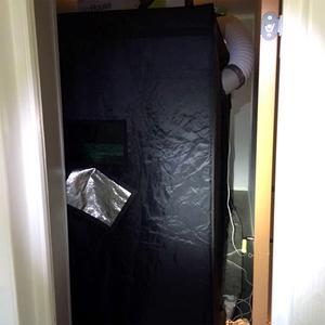 Odlingstältet tog upp nästan hela det rum som det var placerat i. Bild: Polisens förundersökning.