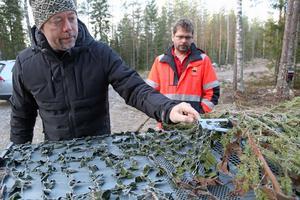 Tobias Nordlander och Thony Eriksson visar anordningen som håller luckan uppe på fällan – tills ett vildsvin går in och bökar på gillerplåten...