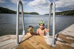 Kusinerna Lucas Jacobsson, 7 år, och Jacob Demir, 12 år har precis tittat ner i vattnet. Nere på botten ligger visst en tegelsten.