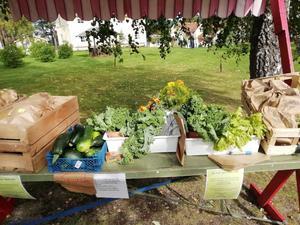 På Orbaden Spa och Resort kan man köpa egenodlade grönsaker. Foto: Kalle Nebes