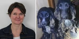 """""""Hundarna mår bättre och bättre hela tiden"""", säger Jenny Larsson, länsstyrelsen."""