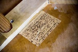 Soffbordet är tillverkat på en fånganstalt i Stockholm 1945. Under bordsskivan sitter en handskriven lapp kvar från Fångvårdens arbetsdrift.
