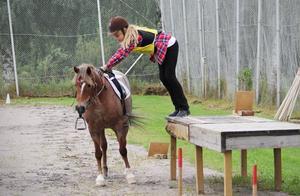 Att stanna till vid en bänk, kliva av och leda hästen en bit för att därefter sitta upp igen ingår i banans tävlingsmoment. Julia Westerberg och hennes Red power lyckas vid första försöket.
