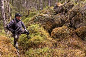 Björnarna inventeras oftast utifrån observationer under älgjakten. Lars Wiklund hoppas på att de mer exakta DNA-analyserna av spillning ska kunna komma tätare än hittills, var femte år..