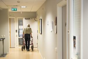 Politiken måste satsa på att öka andelen utbildad personal inom äldreomsorgen. Foto: TT