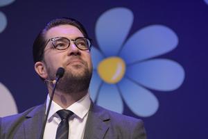 Sverigedemokraternas partiledare Jimmie Åkesson Foto: Janerik Henriksson / TT