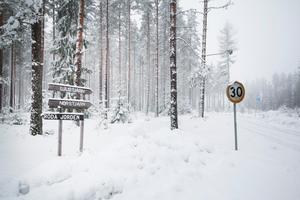 De tre tjärnarna Ljustjärn, Norstjärn och Tattartjärn är inbäddade i snöig skog och väntar på pimplare. I sjöarna finns bland annat röding och regnbåge.