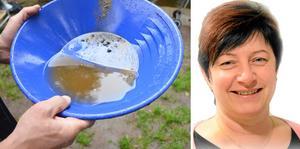 2020 slog turismen inom Sverige rekord. På bilden: guldvaskning samt Ewa-Leena Johansson (S).