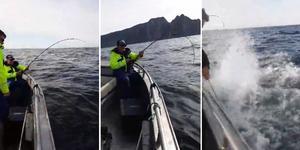 """""""Att den var så stor som den var det kunde jag inte föreställa mig"""", säger Glenn. Foto: Team Mieko Fishing"""