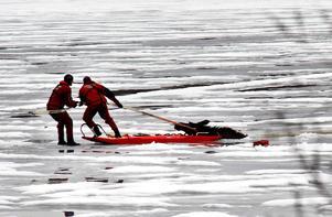Räddningstjänsten i färd med att dra upp älgen ur isvaken i Bölesjön.