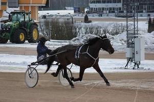 Amanda Hedlund och Global Timeless under ett snabbjobb på Bergsåker tidigare i vintras. Under onsdagen var det Daniel Wäjersten som körde hästen till seger.