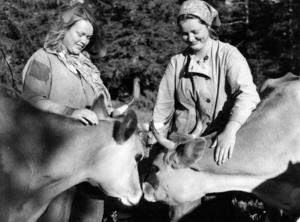 1976 var de skånska systrarna Maj-Lis och Britt-Marie (inget efternamn finns i ÖP:s arkiv) butöser på Östra Galåbodarna.