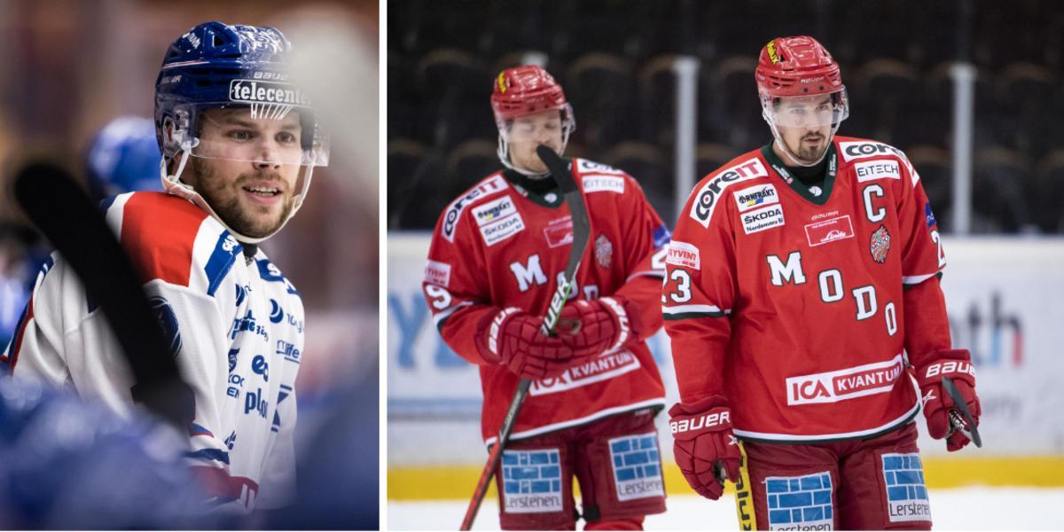 Hårdsatsande HV71 är storfavorit – så högt rankar vi Modo Hockey