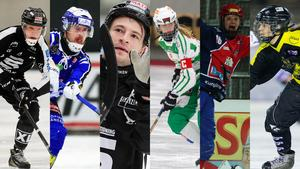 Daniel Berlin, Martin Johansson, Christoffer Edlund, Malin Persson, Camilla Johansson och Anna Widing kan bli årets spelare.Foto: Arkiv/TT (Montage).