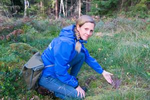 Kommunekolog Carolina Hillerdal Ljungqvist med den rödlistade svampen. Rödlistning görs av Artdatabanken för att utvärdera och bedöma tillståndet, utdöenderisken, för arter i naturen och är ett hjälpmedel vid naturvårdsprioriteringar. Listningen saknar dock juridisk status.